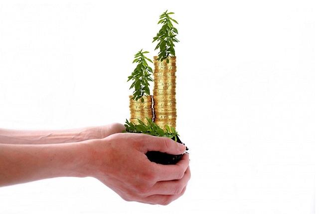 Pieniądze z rośliną trzymane na rękach